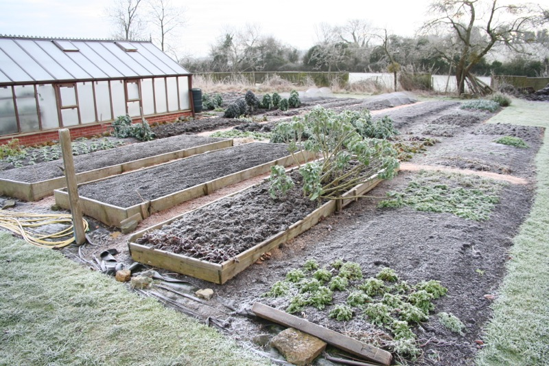 Just before new year in a frost of -6C (21F), good for creating a tilth on beds