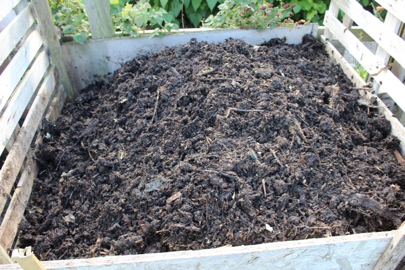 aug15 compost turned, 4 months old