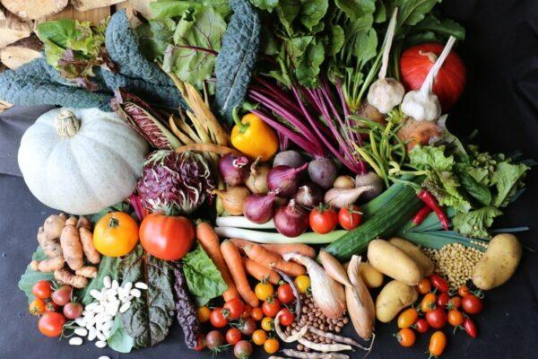 Vegetable cornucopia no dig Charles Dowding