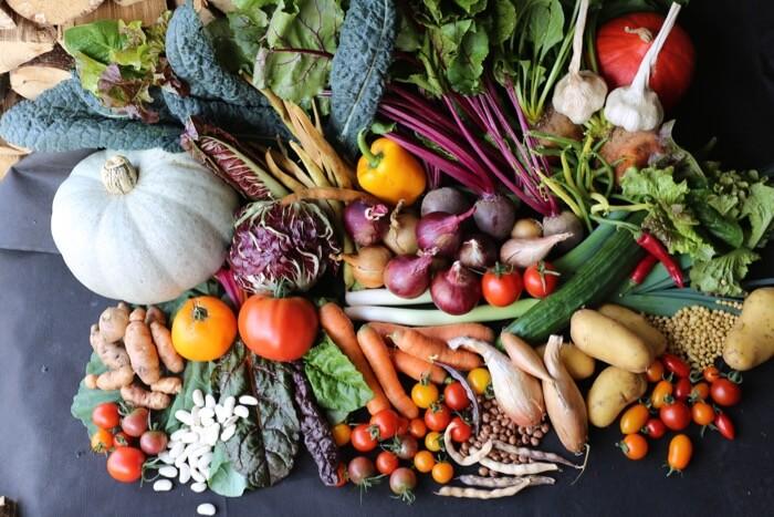 Harvest festival veg September no dig