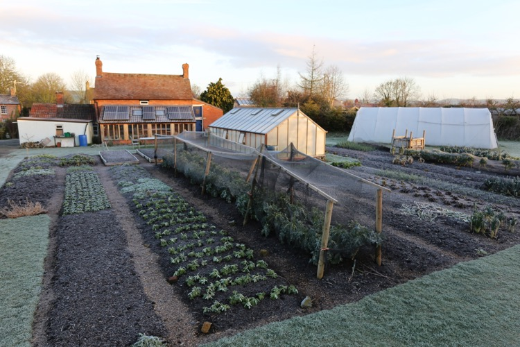 No dig garden February frost