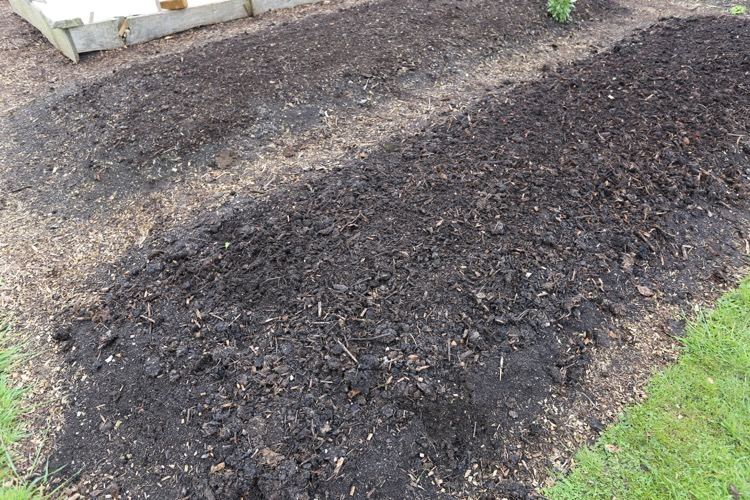 Surface compost and some lumps