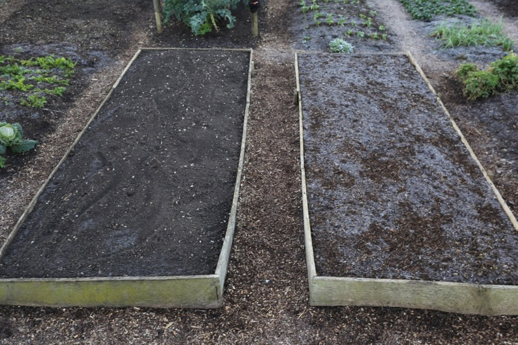 Charles' no dig trial beds Homeacres