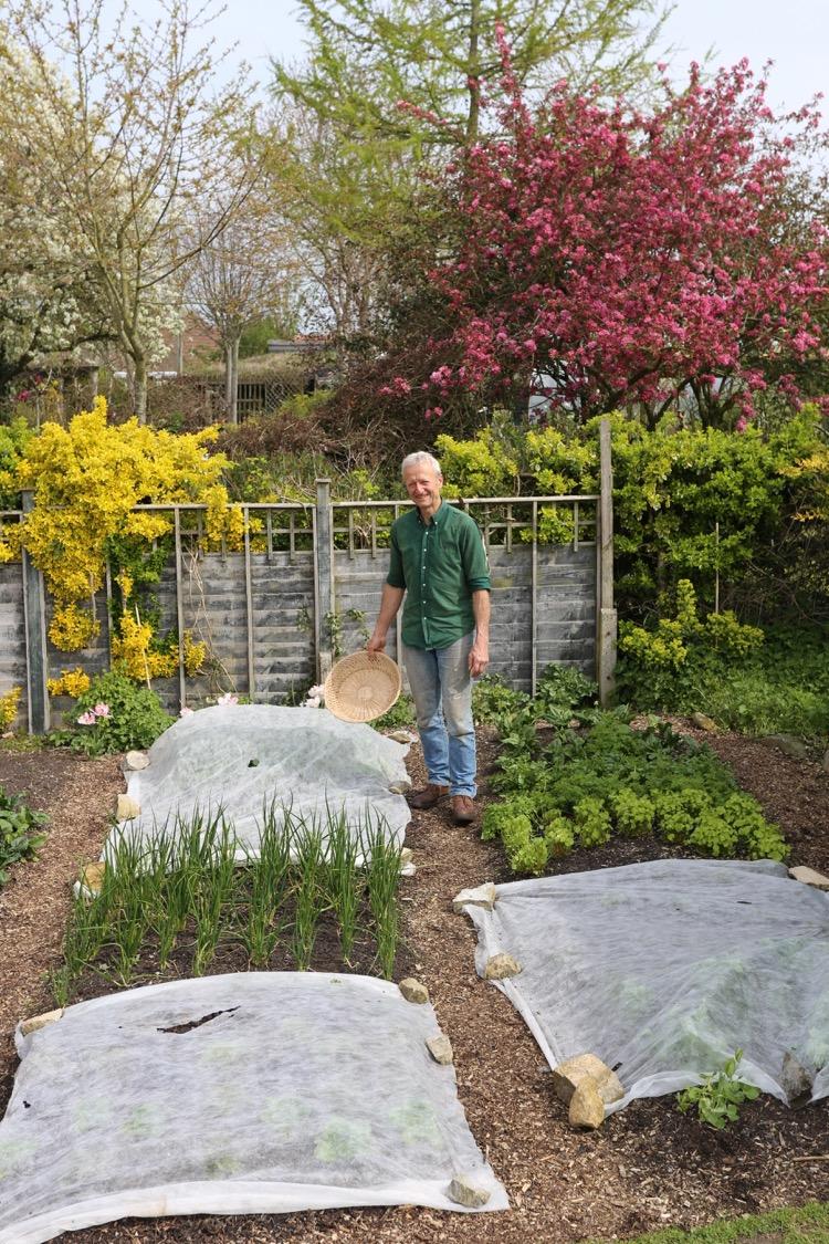 Small garden before removing fleece