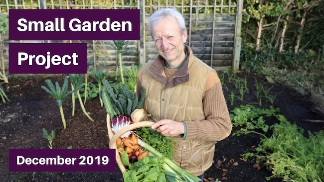 Small garden video thumbnail