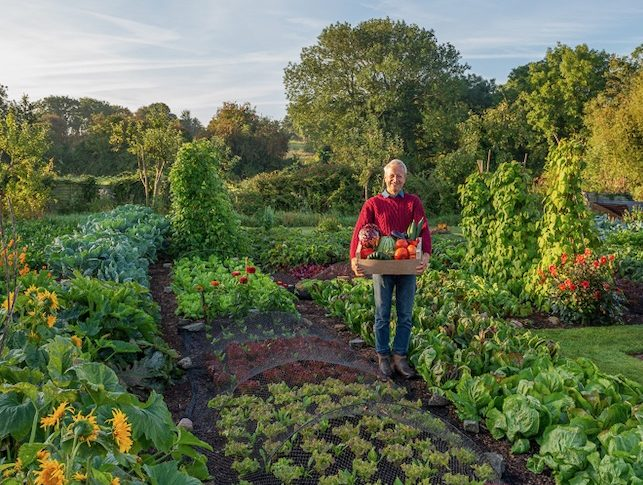 Home & Garden   Products   best online
