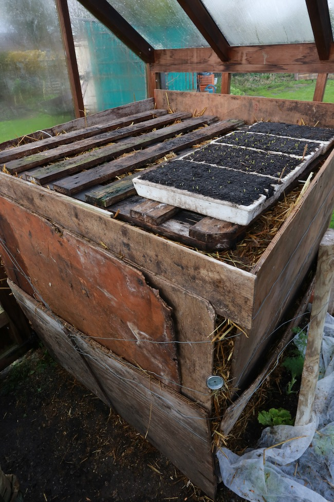 Frame to support seedlings