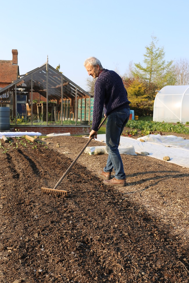 Charles raking to cover new sowing