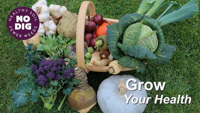 Video thumbnail Grow your Health