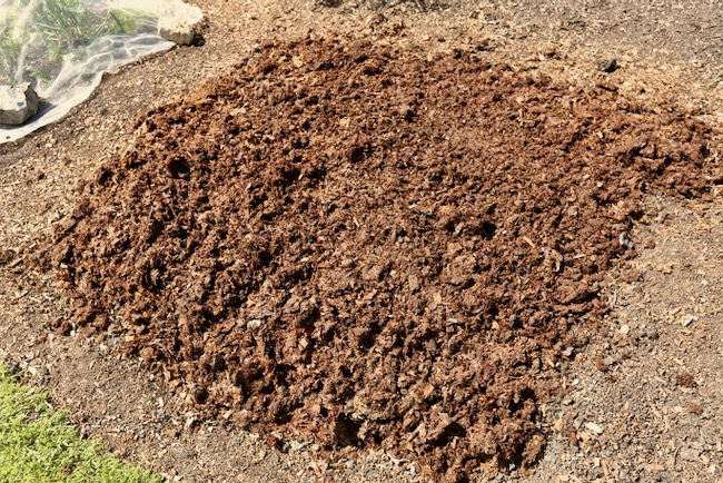 One year old horse manure and wood flake bedding