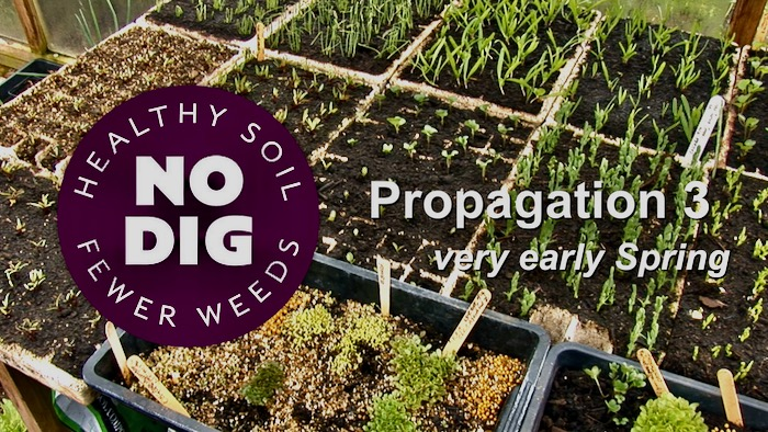 Video thumbnail about propagation