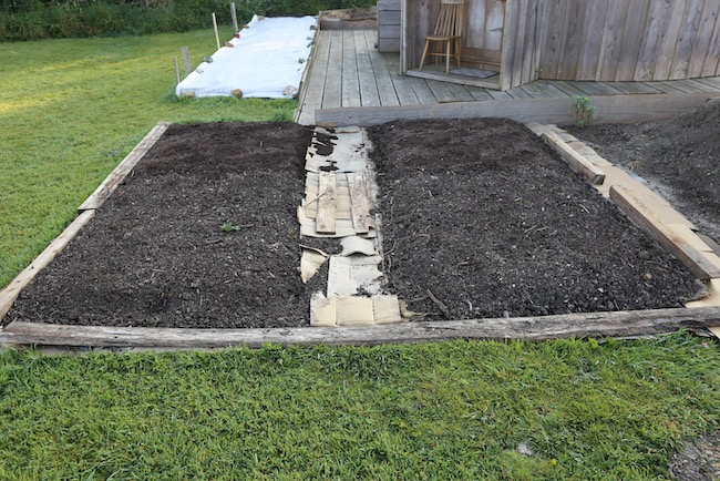 Beds planted to potato
