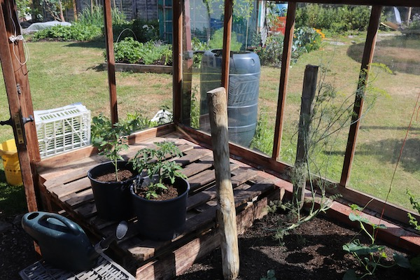 Empty area good for summer propagation
