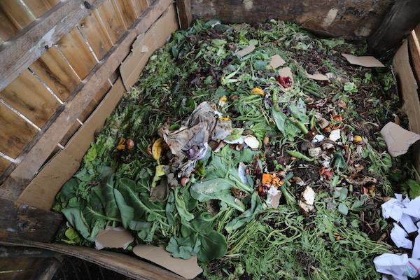 Homeacres current compost heap