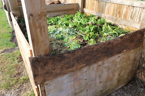 Spring compost heap six weeks making