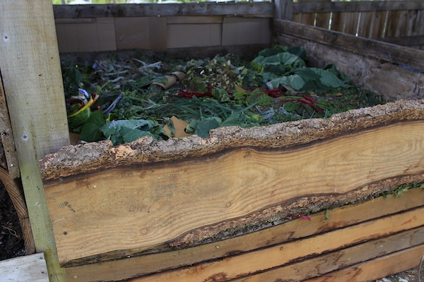 Current compost heap filled for a month.