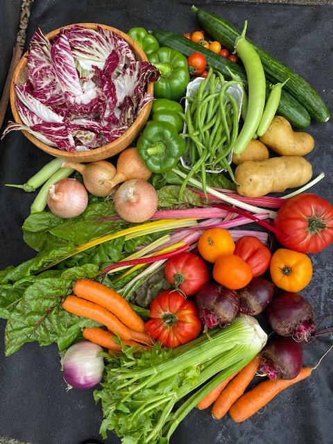 Vegetable display, so many