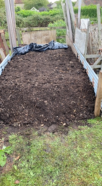 Homemade compost 10 months old