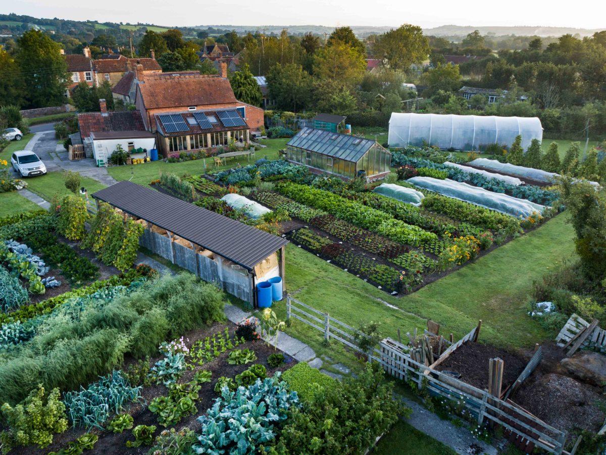 Drone view no dig garden
