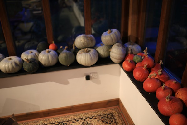 Late September and the new harvest of squashes