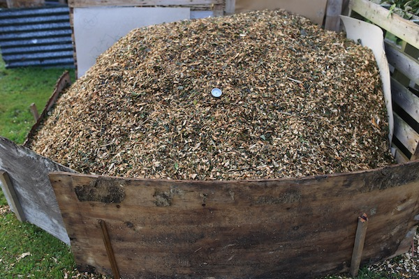 Two day old heap of wood chip