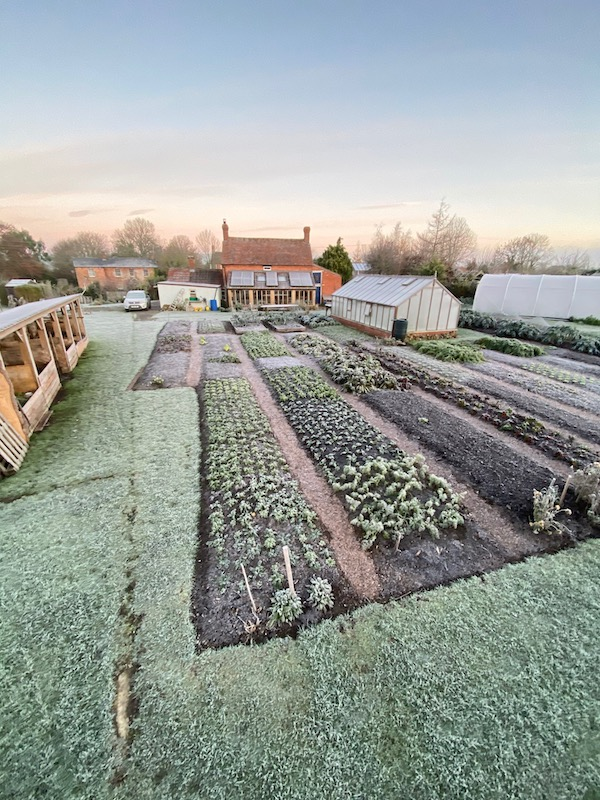 Big frost on the following day