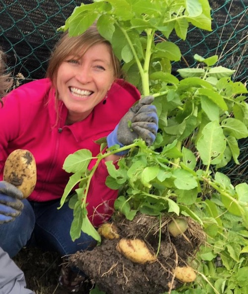 Leslie Sirvent in Patagonia with her no dig potato harvest