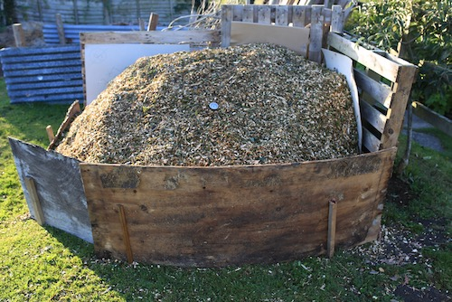 Heap of wood chip newly delivered