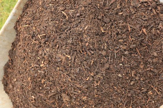 Homeacres compost after I sieve it