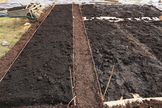 Beds have about 10cm/4in mulch of compost, woodchip in paths