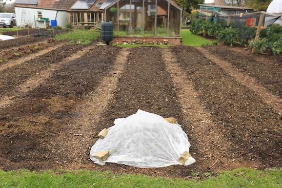 No dig beds and paths ready for spring