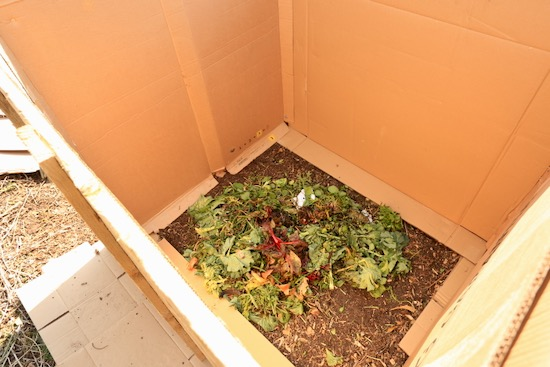 Inside the new compost heap