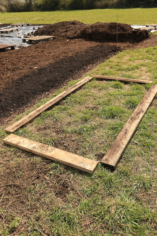 Layout of the new bed with temporary wooden sides on the grass and weeds
