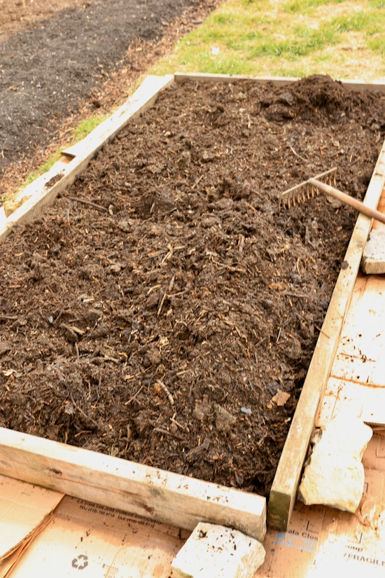 Bed filled with four wheelbarrows own compost