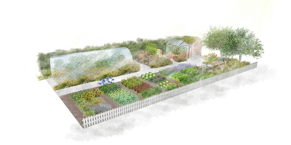 What the RHS no dig show garden will look like