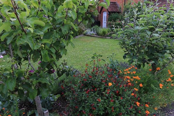 No dig flower garden at Homeacres