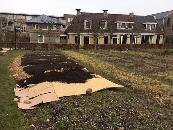February, new garden by Gerrit from Friesland, Netherlands