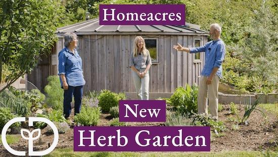 Herb garden June, video thumbnail