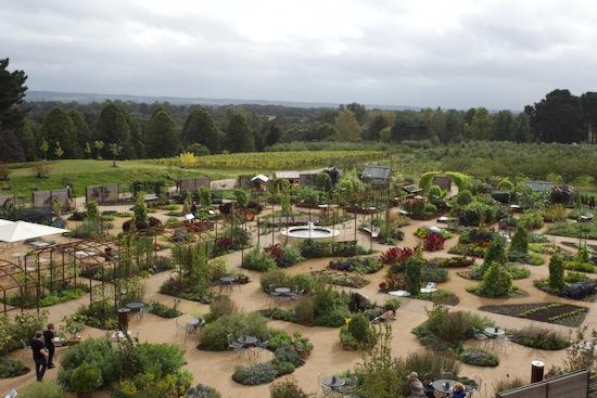 Rooftop view of Wisley edibles garden