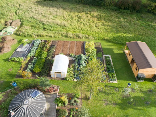 Homeacres new no dig garden 300sqm created in 7 months